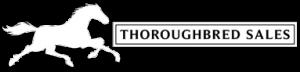 Thoroughbred Sales